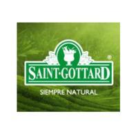 Saint Gottard